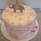 Baby Shower Cake with Elephant Topper from $160