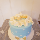 Baby Shower Cake Twin Boys From $180
